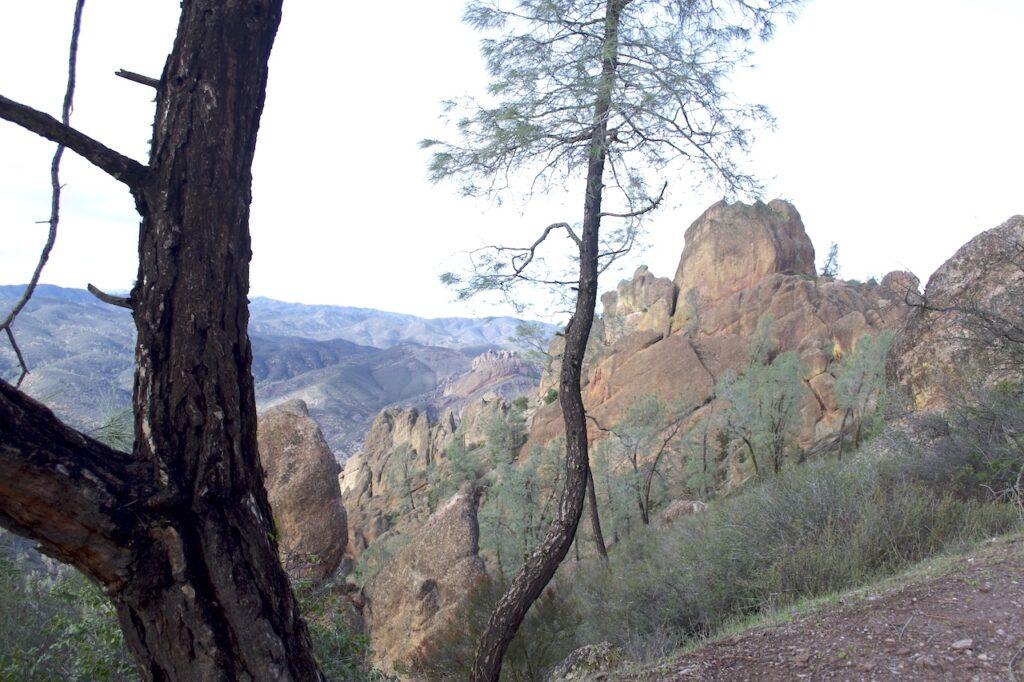 Pinnacles National Park in Californië