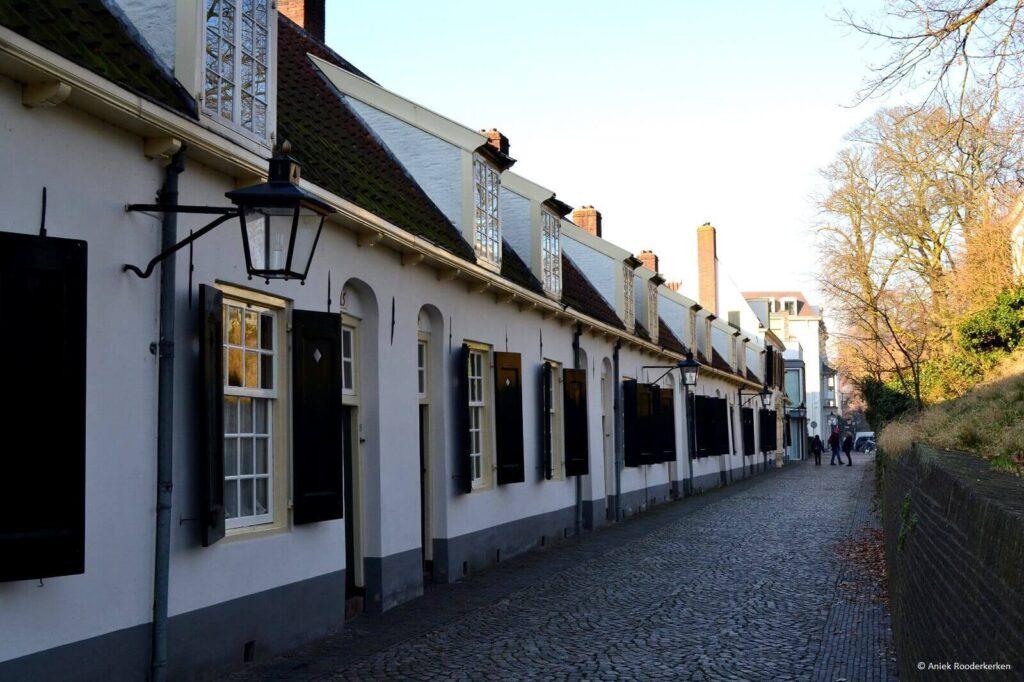 Groene Wissel wandeling Utrecht Bruntenhof Museumkwartier
