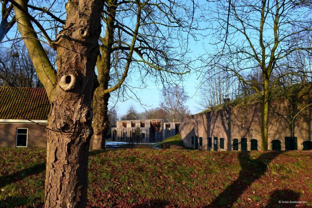 Groene Wissel wandeling Utrecht Fort de Bilt