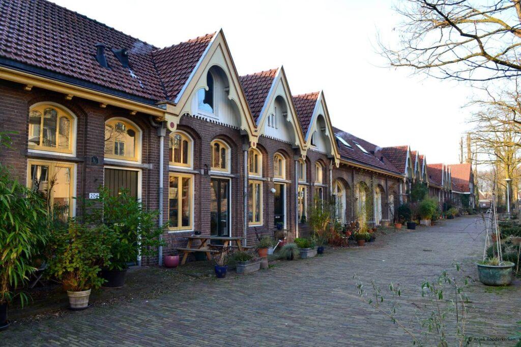 Groene Wissel wandeling Utrecht Wittevrouwen