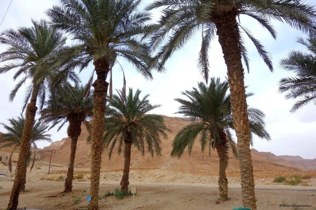Ruïne in Masada (Massada), UNESCO Werelderfgoed in Israël