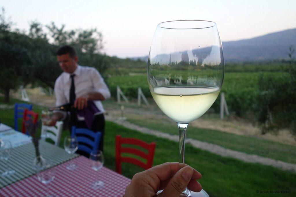 Yedi Bilgeler wijngaard bij Kusadasi