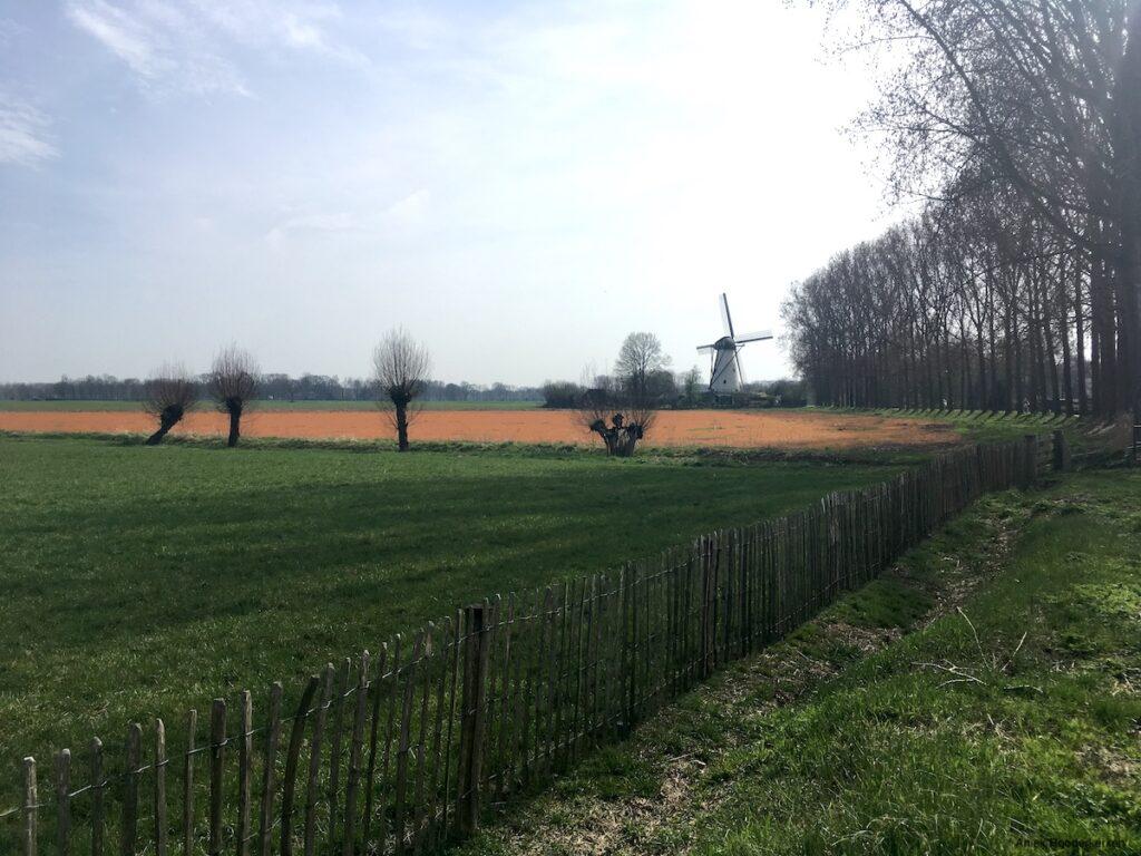 Sint Michielsgestel in Brabant
