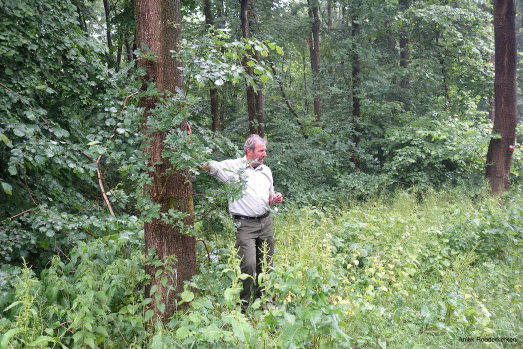 Boswachter André Wels in het Horsterwold
