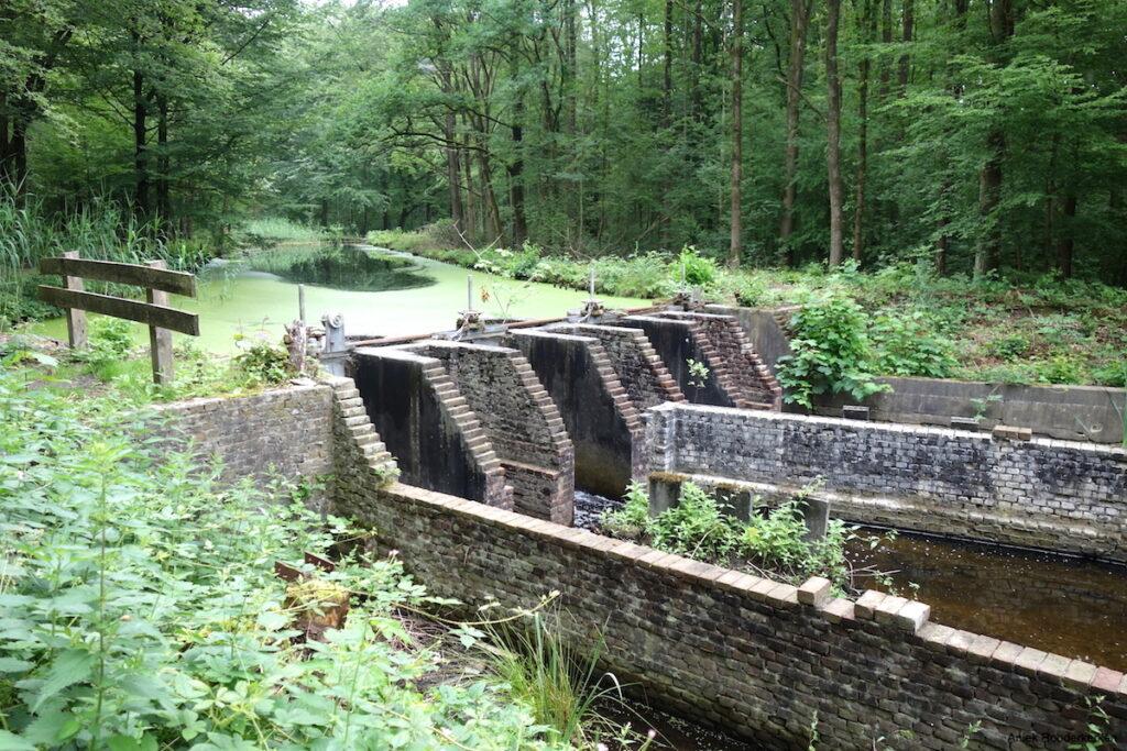 De waterwerken van het Waterloopbos in Flevoland
