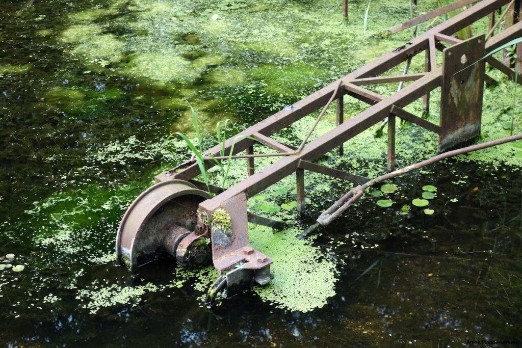 Waterloopbos wordt beheerd door Natuurmonumenten