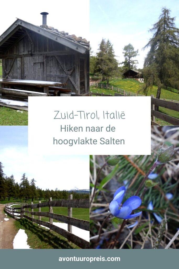 In alle rust en stilte loop ik tussen de lariksbomen. Om mij heen niets dan het getjilp van vogels in de bomen. De laatste sneeuw glinstert nog in het gras. Vanaf Jenesien / San Genesio maak ik een wandeling over de hoogvlakte Salten in Zuid-Tirol. Een heerlijk wandelgebied!