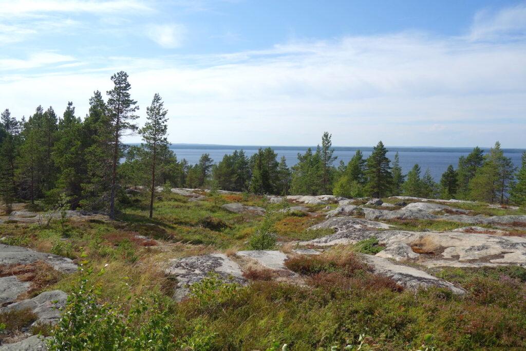 Naturpark Bjüroklubb vlakbij Skellftea