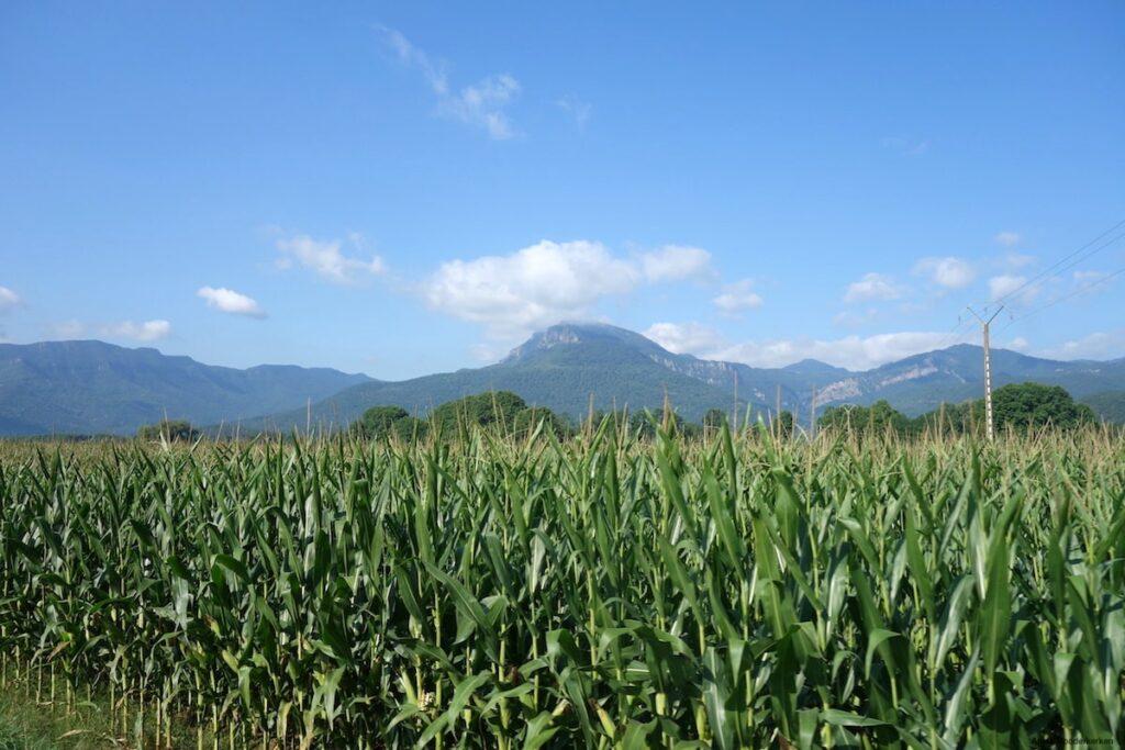 Olot ligt midden in het Parc Natural de la Zona Volcànica