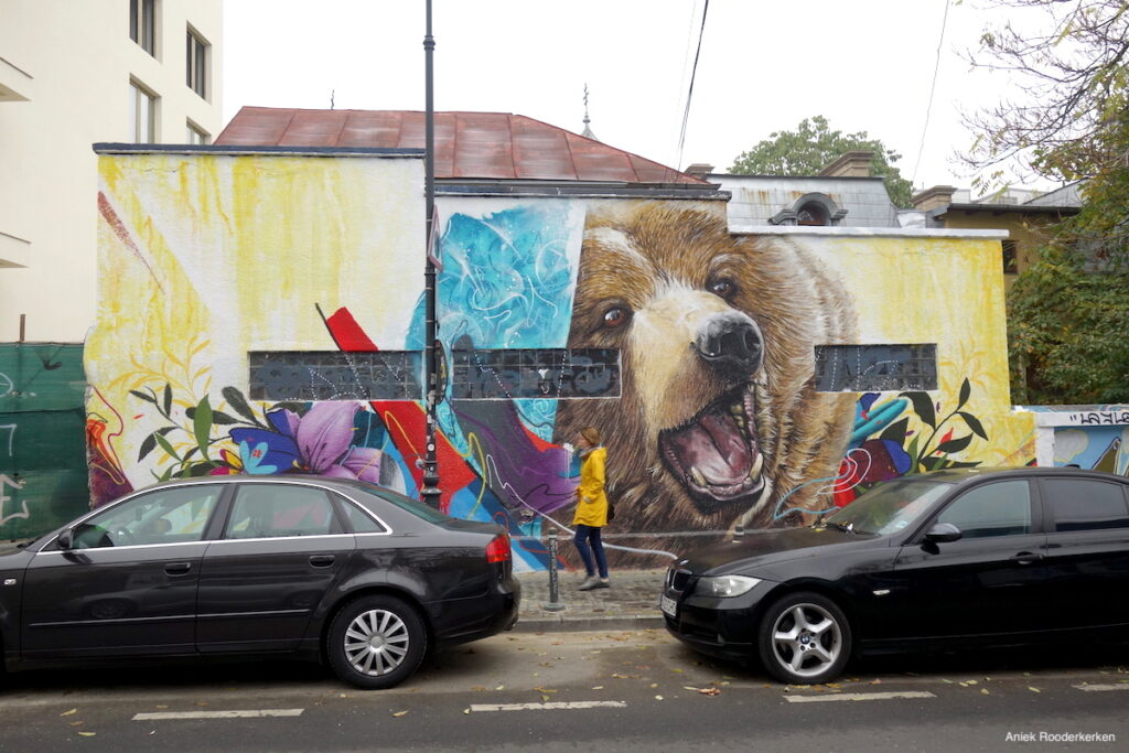 Street art in Boekarest aan de Strada General Eremia Grigorescu.