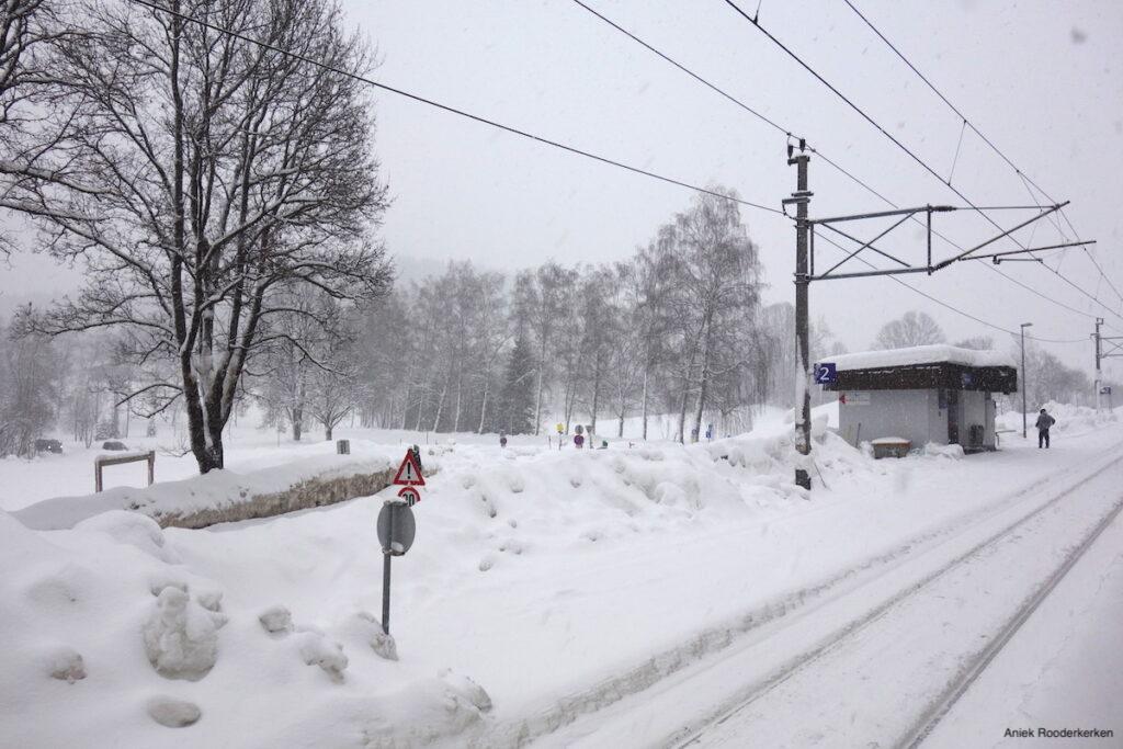 Met de Alpen Express naar Oostenrijk. Langzaam rijdt de trein door een besneeuwd landschap. Ik waan me in een uitzending van Rail Away.