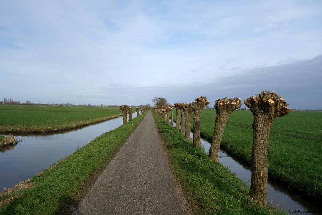 Fietsroute van Utrecht naar Schoonhoven
