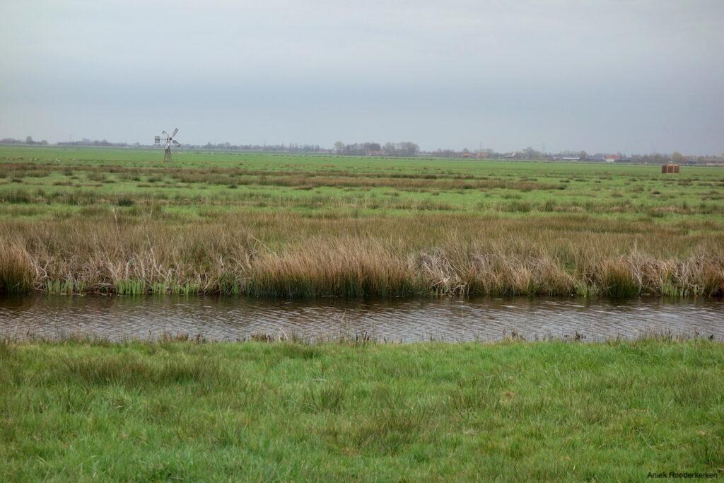 Een typisch Hollands landschap. Fietsroute Utrecht naar Schoonhoven.