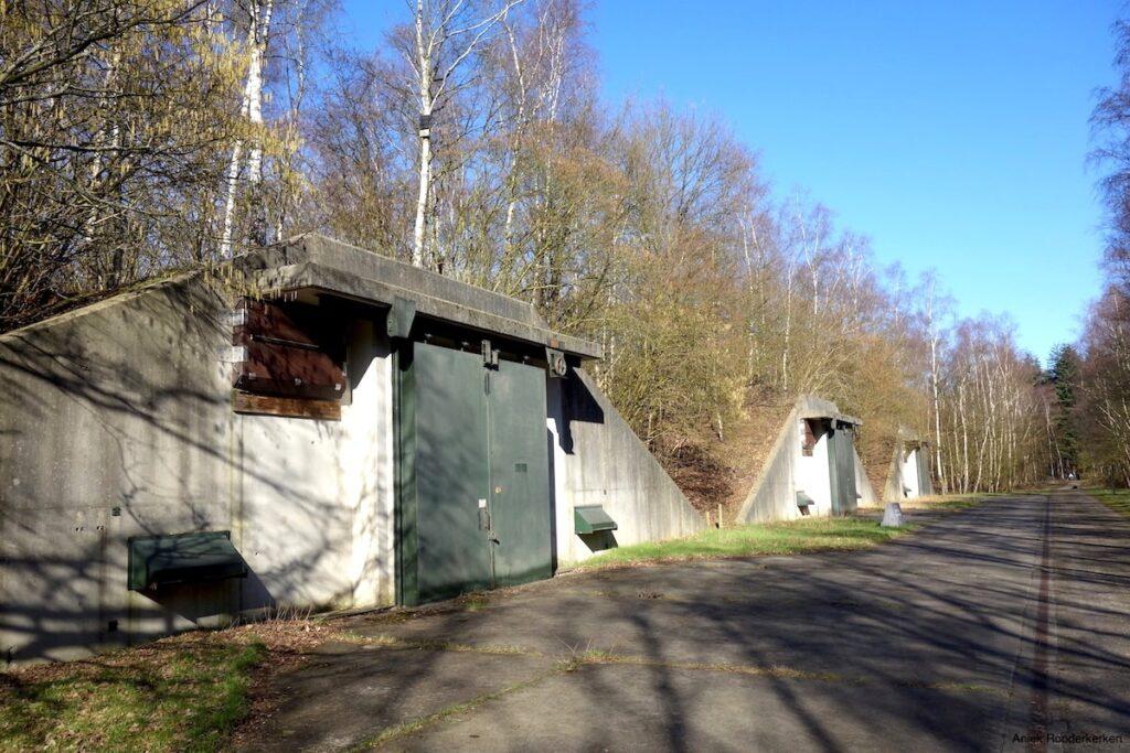 De oude bunkers liggen diep verscholen in het bos
