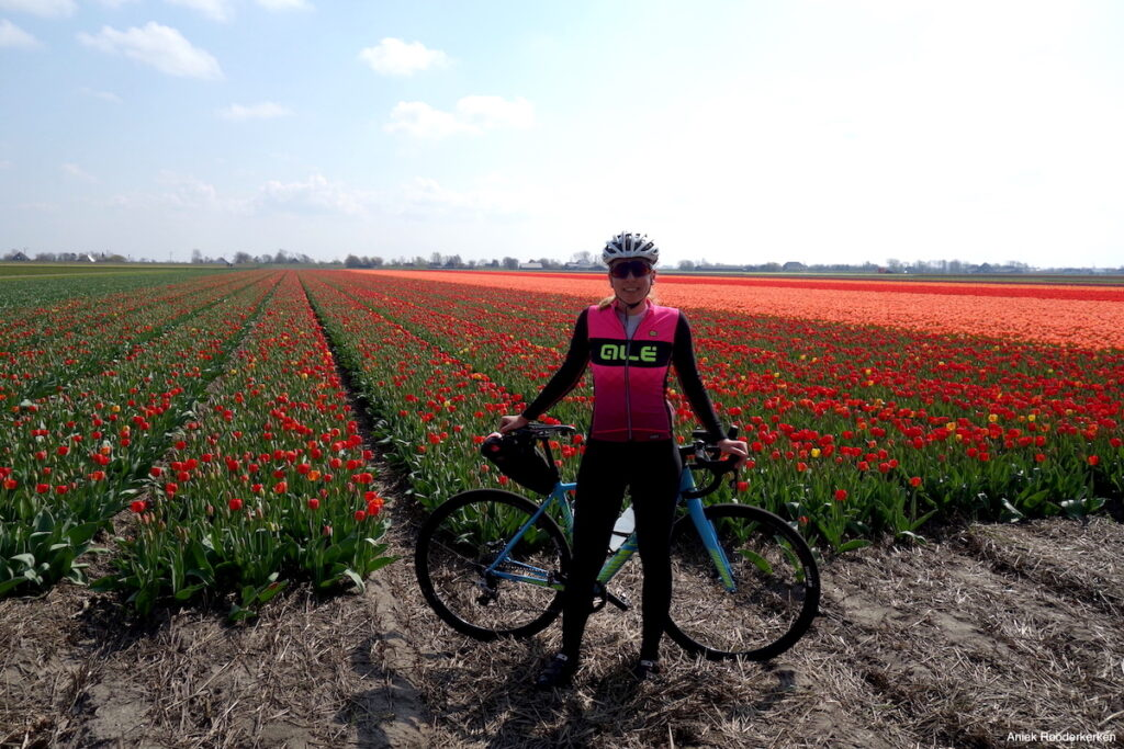 Ik kon het niet nalaten om mijn meest kleurrijke fiets mee te nemen: wat een kleurenpracht zo tussen de bloemen!