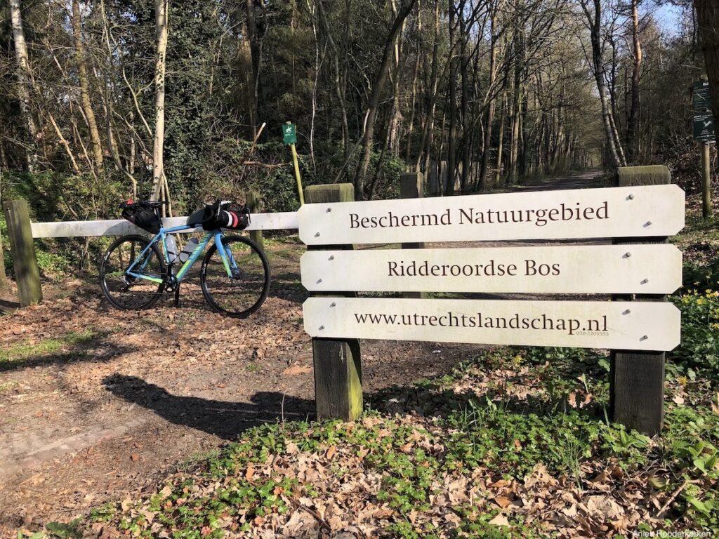 Het Ridderoordse Bos ligt tussen de heuvelrug en de veenweide.