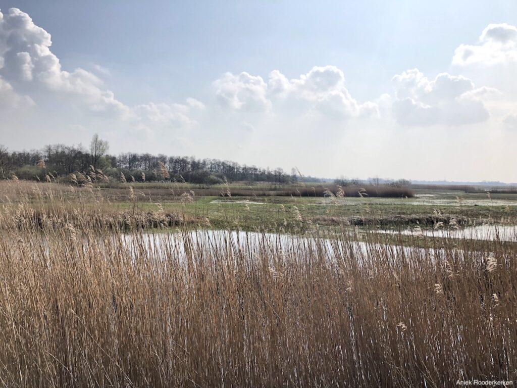 Tienhoven, vlakbij Utrecht