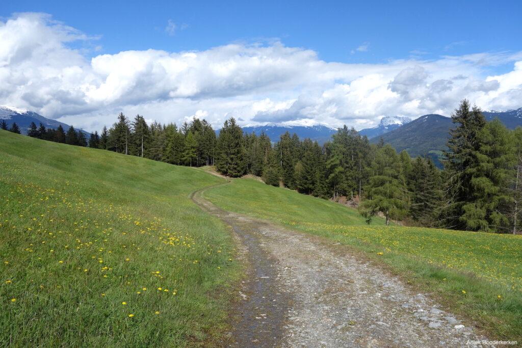 Bergweide met uitzicht op de Dolomieten