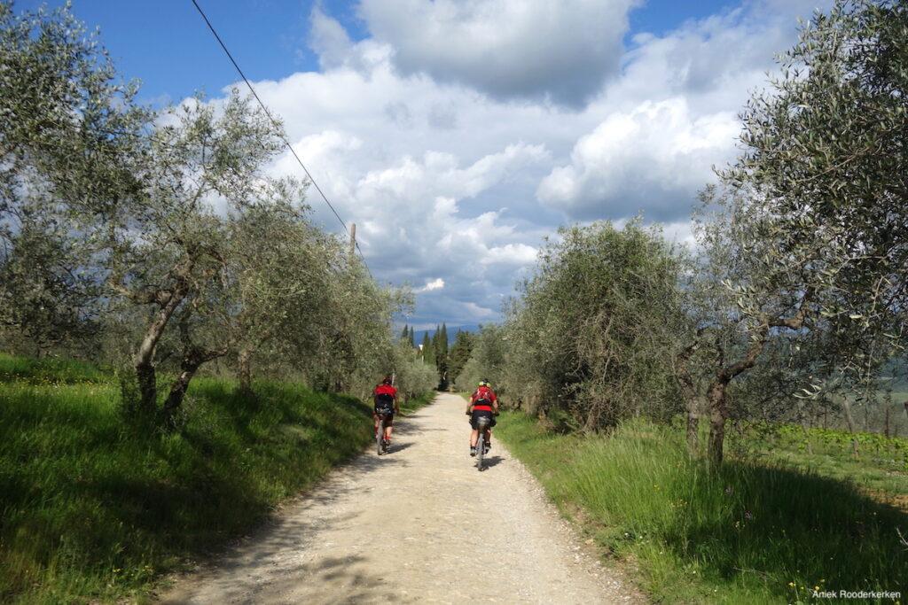 Tussen de olijfbomen en in de richting van Florence