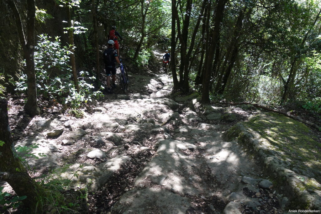 Singletrail bij Nemi: mtb-ers en wandelaars in the richtingen