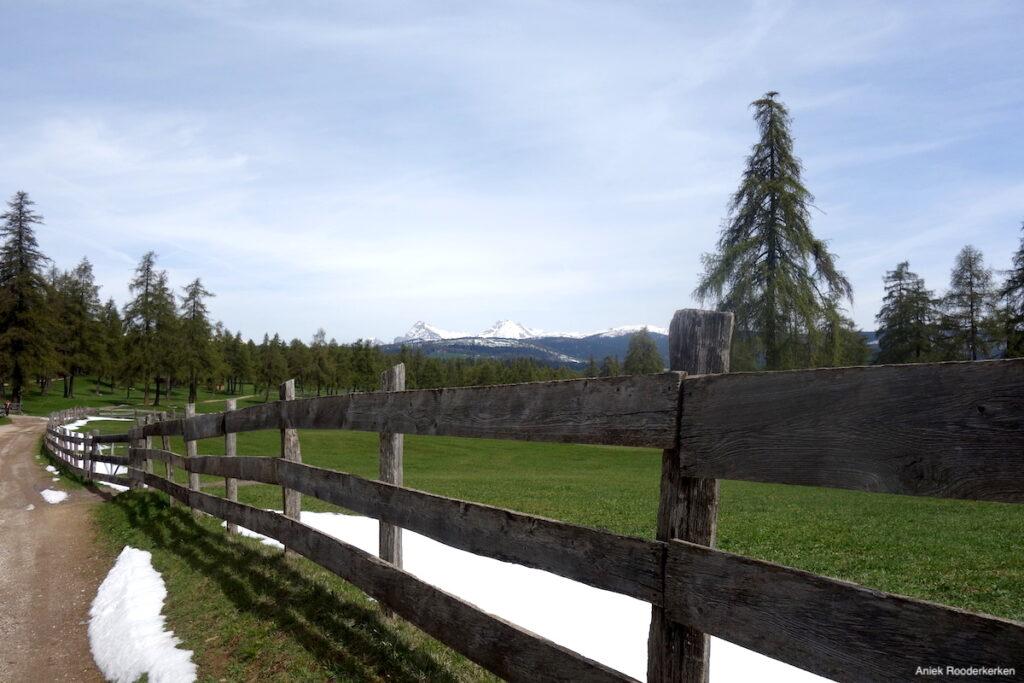 Hiken naar de hoogvlakte Salten in Zuid-Tirol