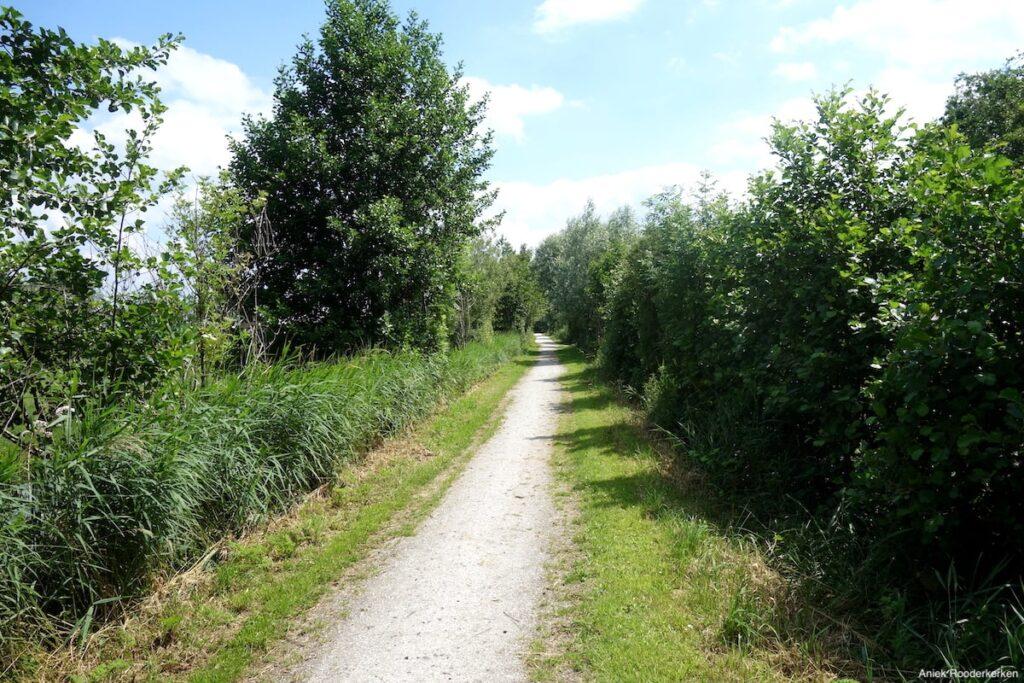 Voorbij Nieuwer-ter-Aa gaat de route door het recreatieterrein de Bosdijken en de Veenkade