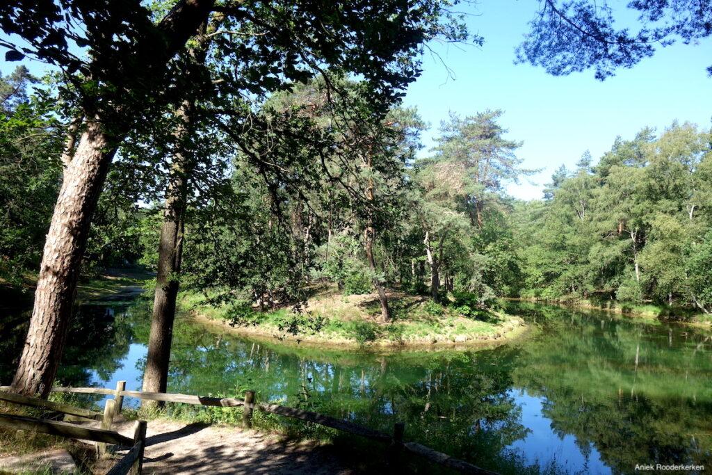 Landgoed Heidestein is een natuurgebied tussen Zeist en Driebergen-Rijsenburg op de Utrechtse Heuvelrug