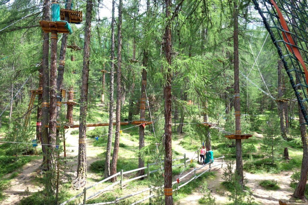 Apenkooien voor volwassenen, Larix Park Livigno