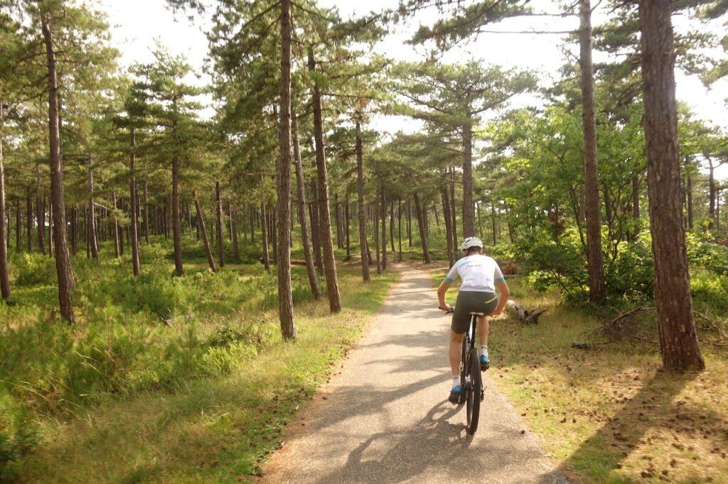 De laatste kilometers van het Rondje Texel op de fiets