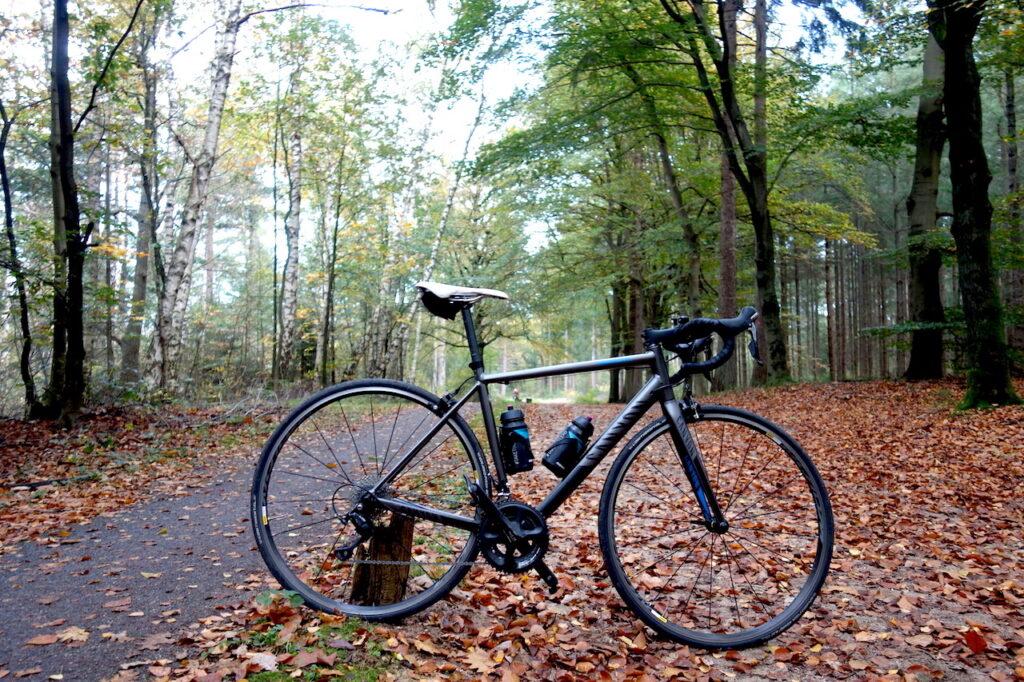 Fietsen door Nationaal Park Utrechtse Heuvelrug in de herfst