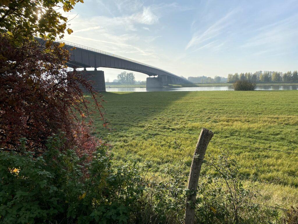 Vanaf Station Rhenen. Vanaf hier lopen we onder de Rijnbrug door, over het Trekvogelpad en door de weilanden.