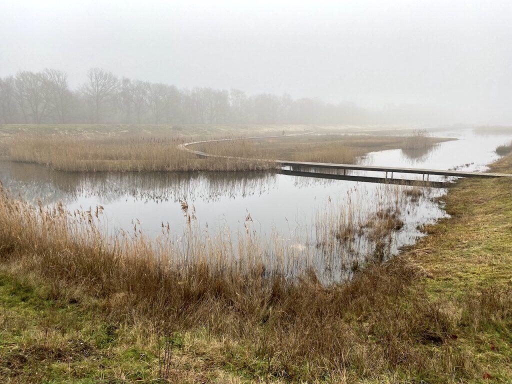 De Zanderij Crailoo tussen Bussum en Hilversum is in beheer van Natuurmonumenten