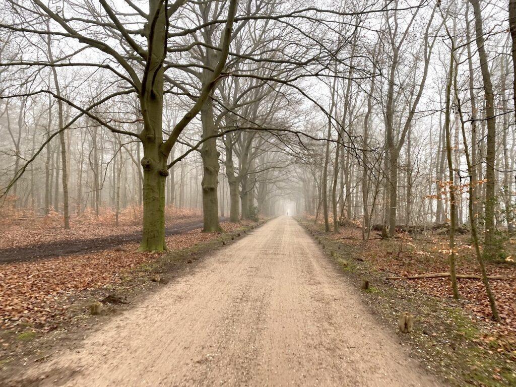 Offroad in Hilversum