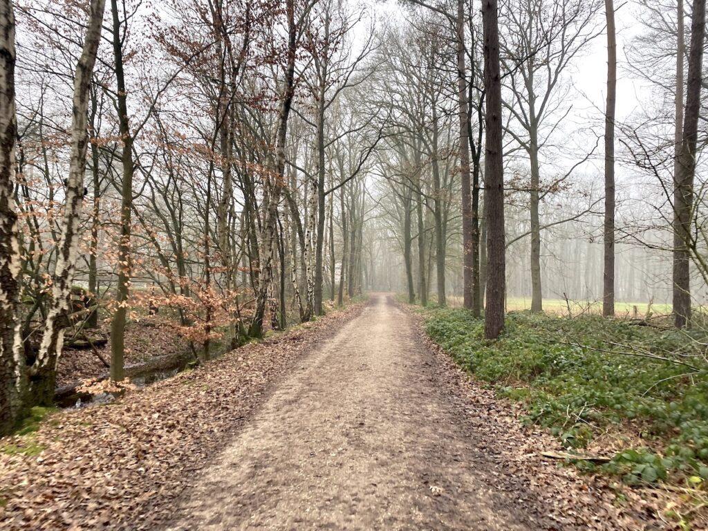 Gravel route Lage Vuursche