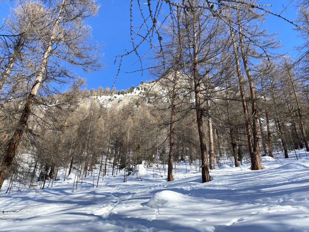 Sneeuwschoenwandelen in Livigno in de winter