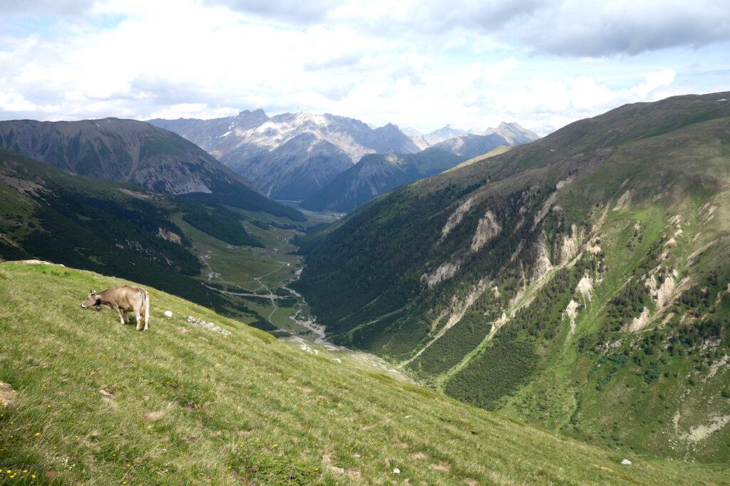 Vallei bij Livigno