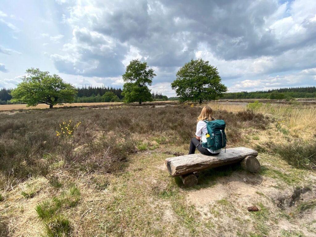 Boswachterij Grolloo in Drenthe