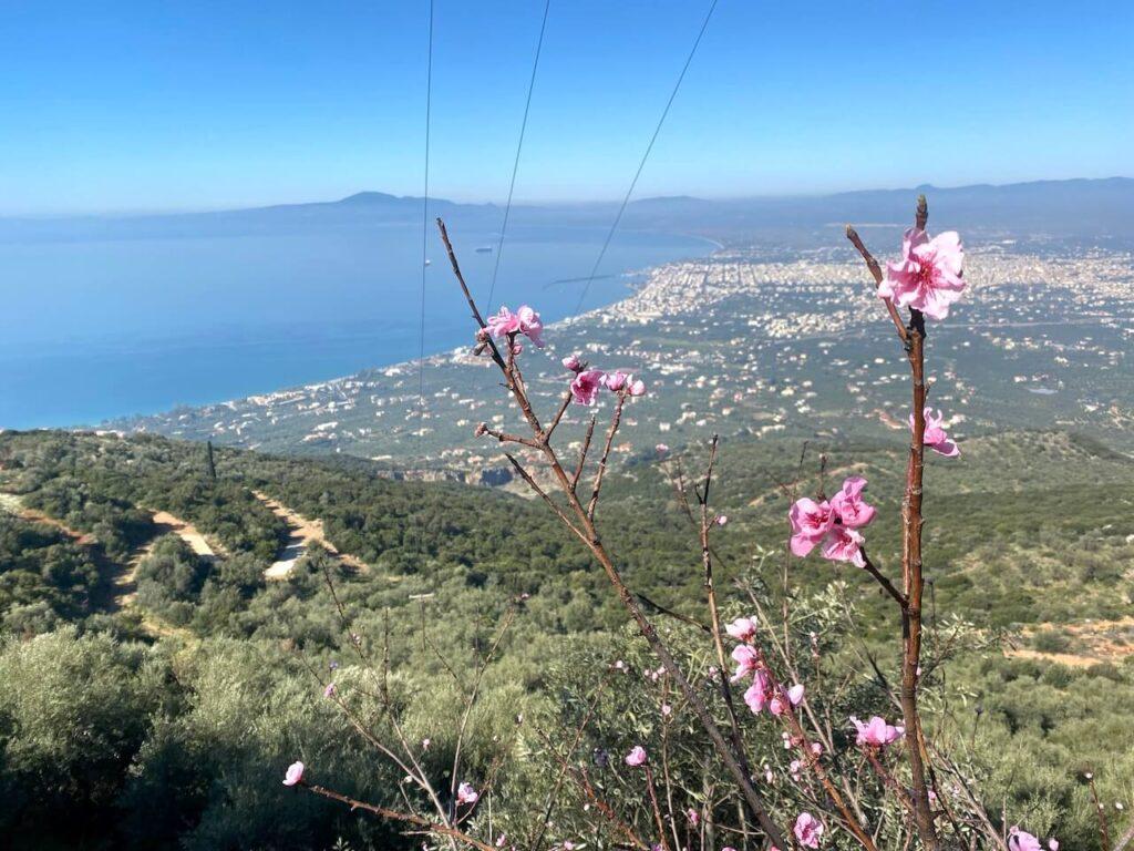 Een panoramisch uitzicht over de Egeïsche zee.