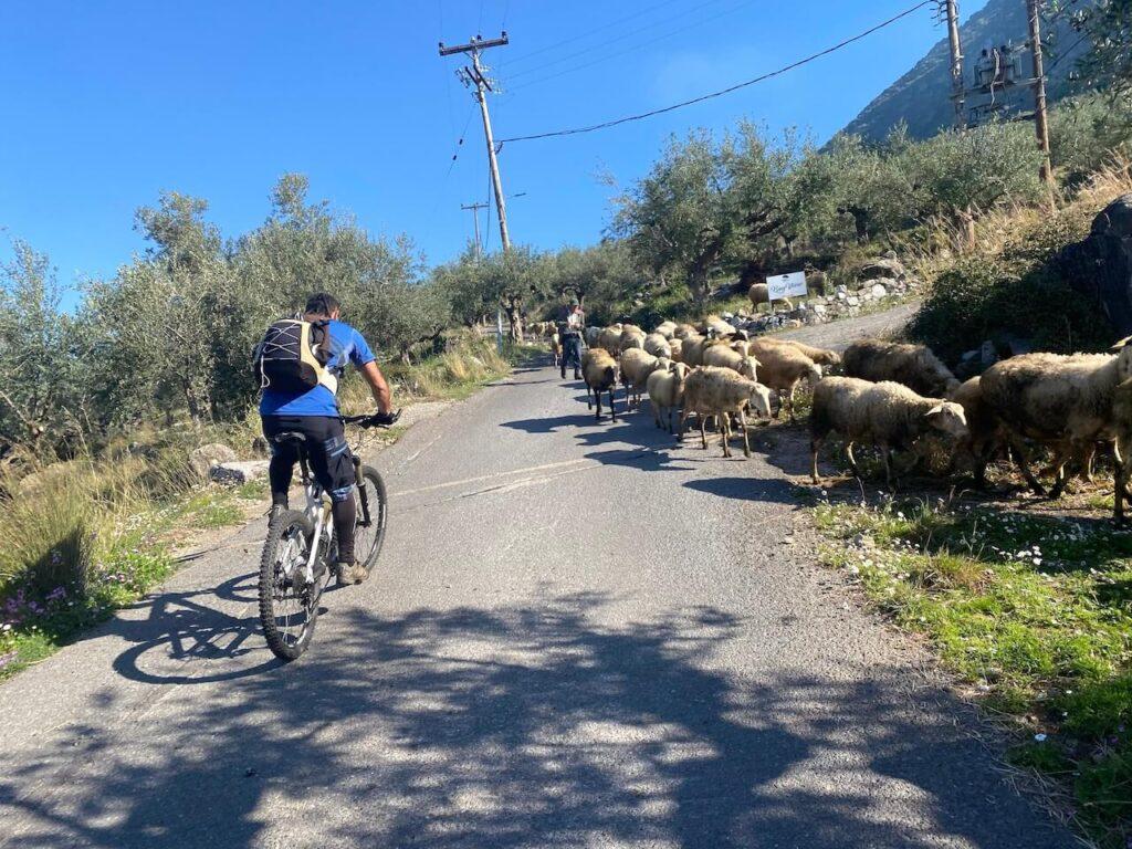 Jeroboam Greece Kalamata Gravel Challenge