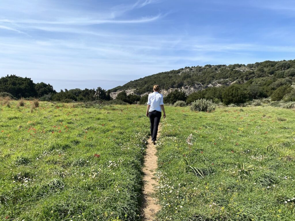 Wandelen door een vlakte vol hoog gras en kleurrijke veldbloemen in Griekenland