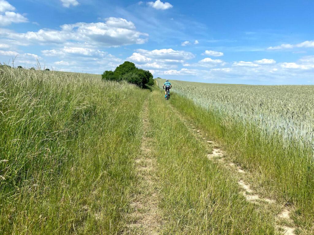 Glooiende heuvels in Mecklenburg-Voor-Pommeren