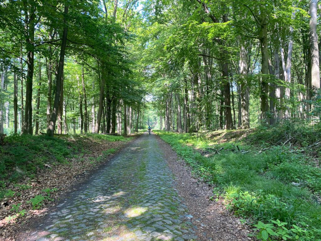 Kasseienstroken in Mecklenburg-Voor-Pommeren