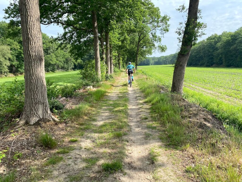 Mountainbiken in Friesland