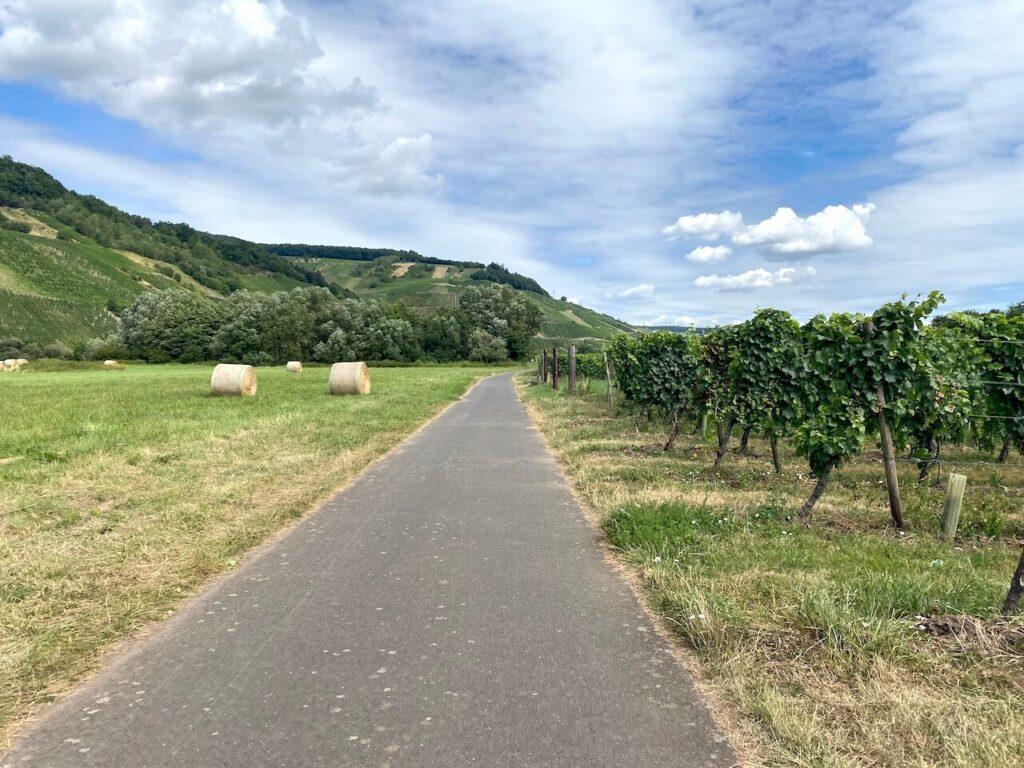 De moezelfietsroute voert over rustige fietspaden