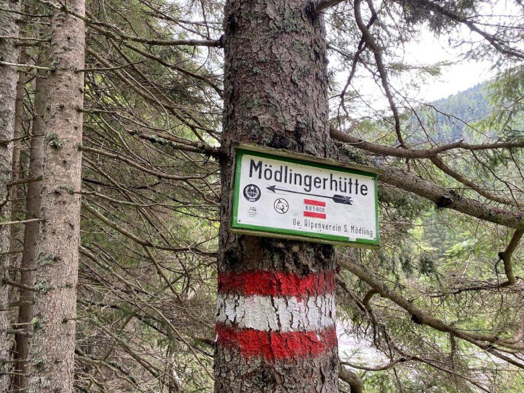 Mödlinger Hütte op de Treffneralm