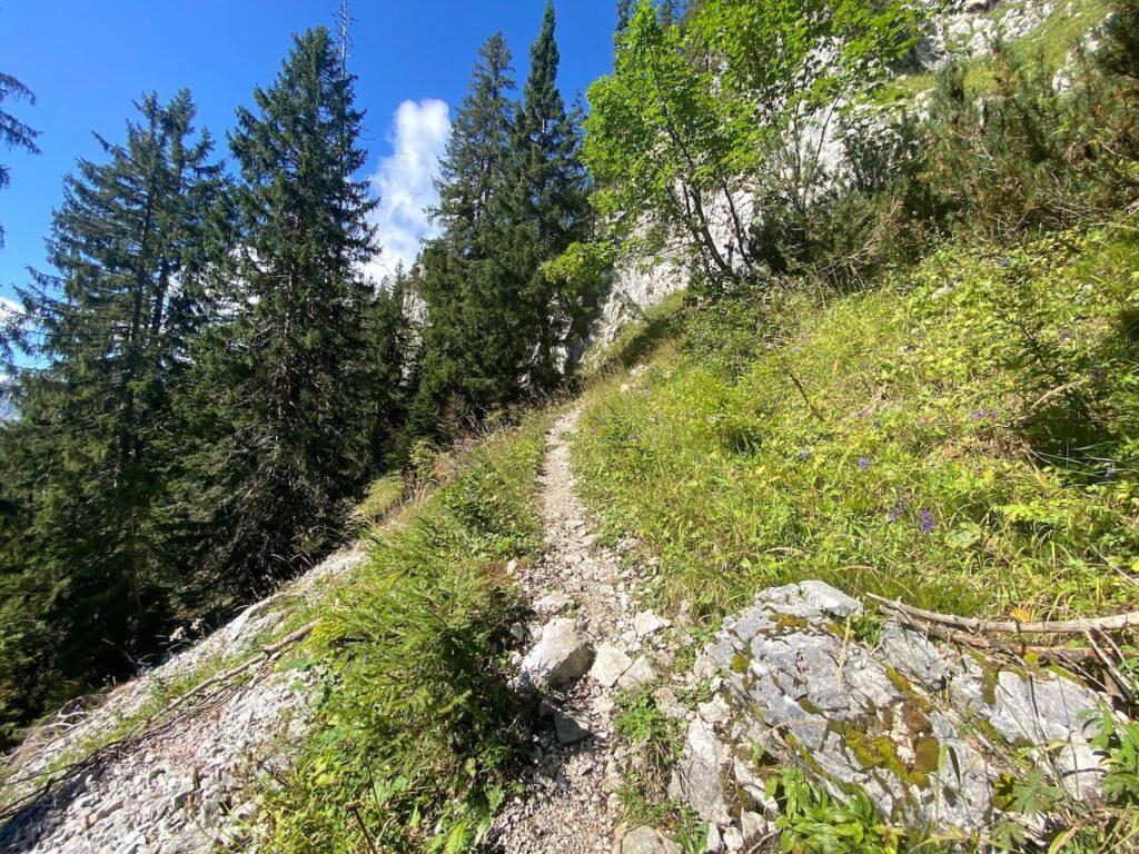 De steile tocht naar de Ennstalerhütte