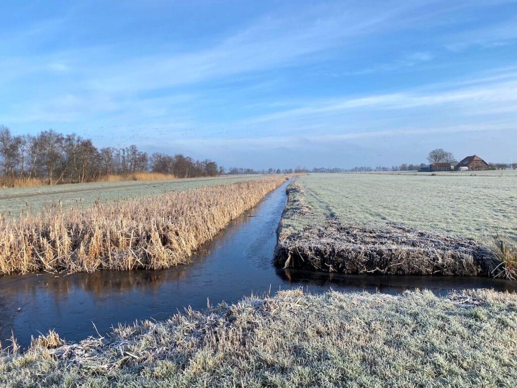 Weids polderlandschap met boerderijen in de verte