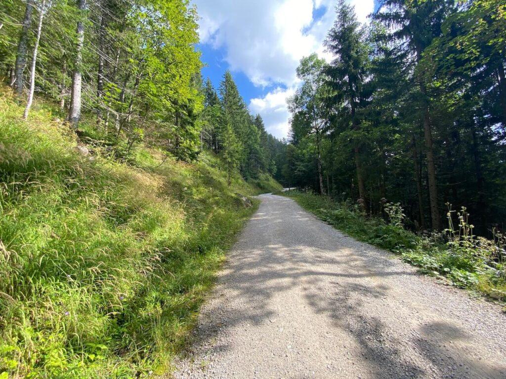 Over brede boswegen