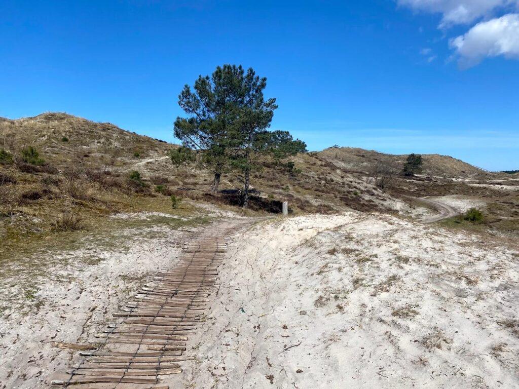 Fiets de 15 kilometer lange mountainbikeroute van Schoorl