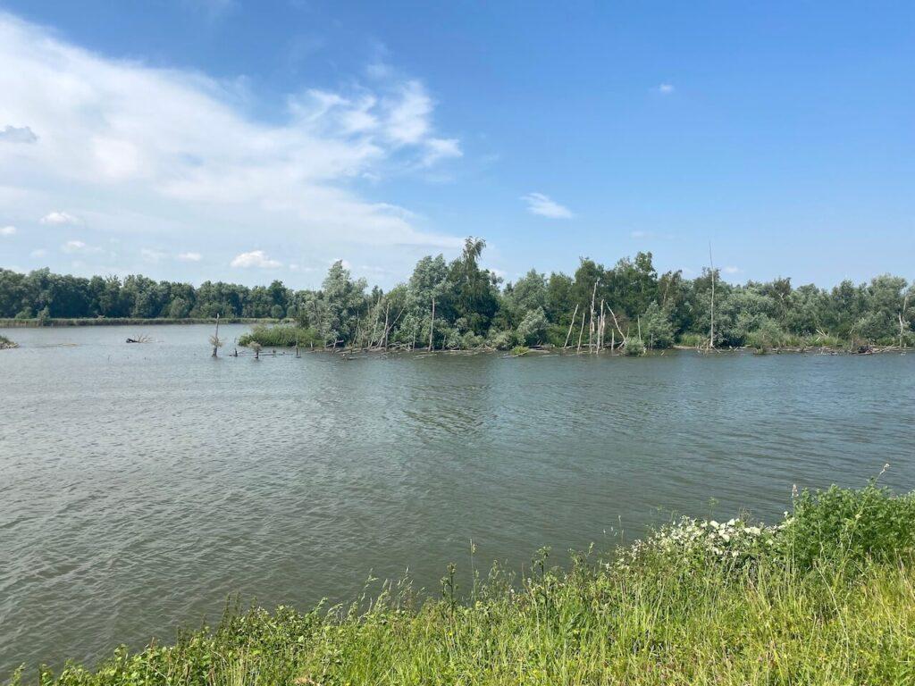 Fietsen van Zierikzee naar de Biesbosch